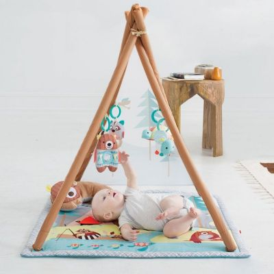 skiphop-camping-cubs-baby-activity-gym5
